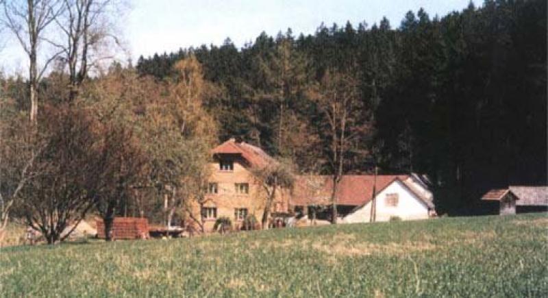 Fotografie mlýna v Rachyni.